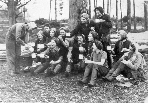 Lumber Jills enjoying a tea break