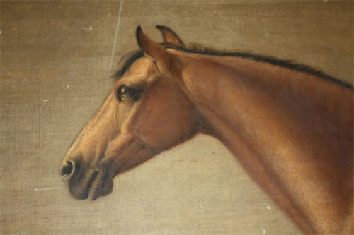 William Shiels, Connemara Gelding (detail), 1839-41, photographed by FVS Murrell. The pony was property of John Bindon Scott, of Cahireon, Galway, in the collection of National Museums Scotland.