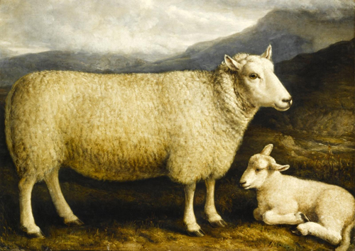 Cheviot Ewe and lamb, 1832-1838, bred by Mr Thomson Attonburn, Roxburghshire