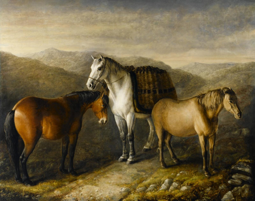 William Shiels, West Highland Ponies; the ponies were from Eriskay, Mull, and Uist. On display at the National Museum of Rural Life, East Kilbride.