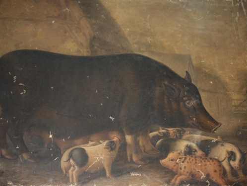 William Shiels, Siamese Sow and Piglets, 1832-38