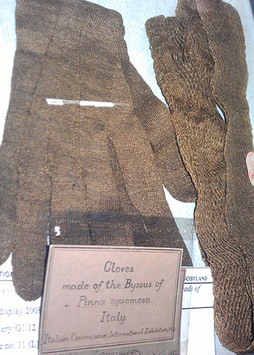 Gloves and scarf made from golden sea threads
