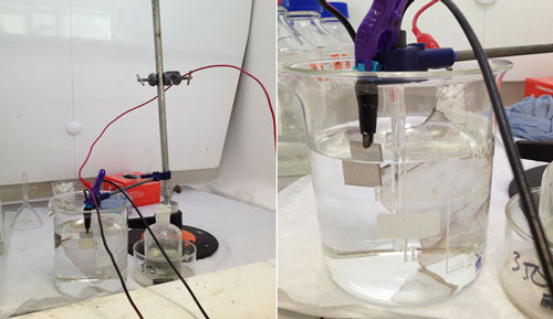 The electrochemical cell set-up