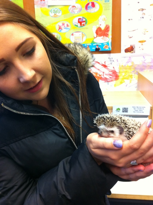 Alyson Orme with a handling a hedgehog at a National  Museums Scotland event.