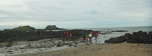 P6 at Yellowcraigs beach